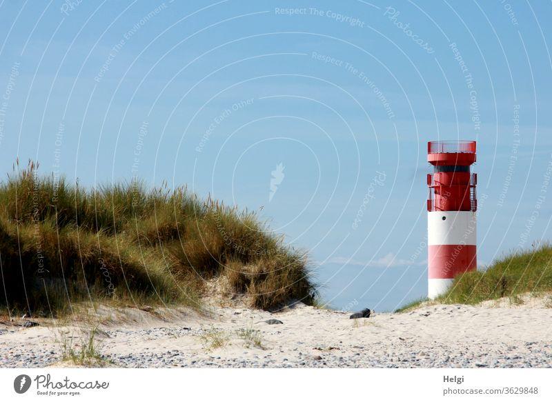 rot-weißer Leuchtturm steht vor blauem Himmel am Rande der Düne von Helgoland Bauwerk Architektur Sand Insel Nordsee Nordseeinsel Dünengras schönes Wetter Natur
