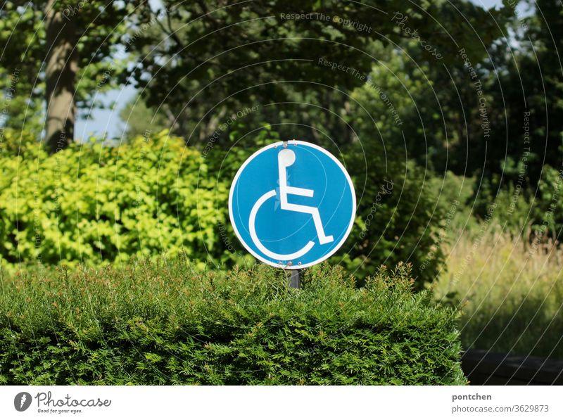 In einem Busch steckt ein rundes Hinweisschild mit einem Rollstuhlfahrerfahrer Abbild   weist einen  Behindertenparkplatz aus. hinweisschild rollstuhlfahrer