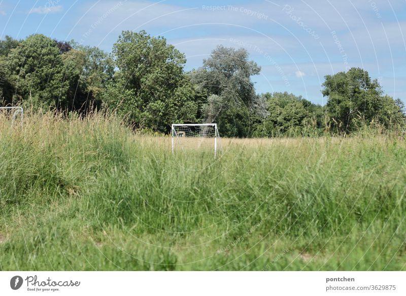 Weißes  Fußballtor in hohem Gras vor Bäumen und blauem Himmel. Freizeitsport gras landschaft freizeitsport Sport grün Sportstätten Tor Freizeit & Hobby Netz