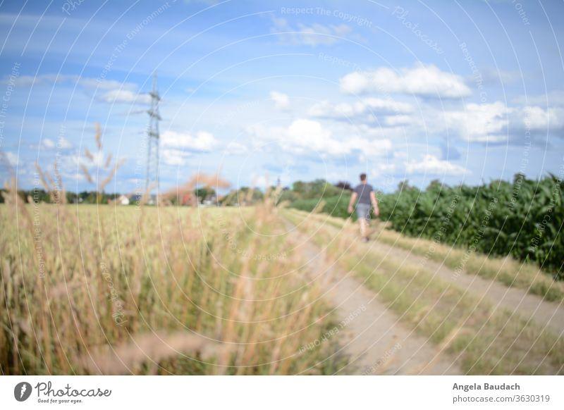 Mann geht auf Feldweg spazieren feldweg Spaziergang Spaziergänger Spazierweg Spaziergang in der Natur Blauer Himmel Wolken Strommast elektrisierend Ruhe