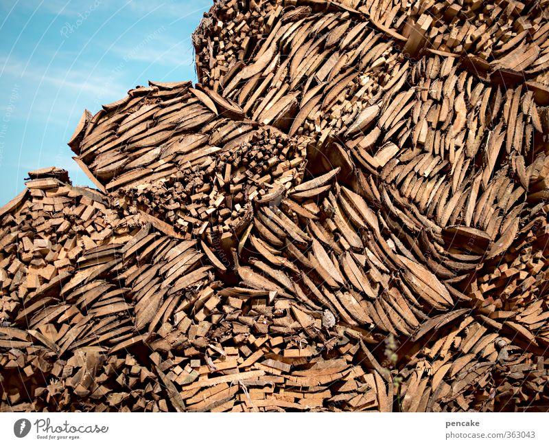 baumaterial   gut holz   AST6 Inntal Natur Urelemente Wald Alpen Holz ästhetisch Duft Originalität Sauberkeit Baumrinde Rest Papierherstellung bauen Baumstamm