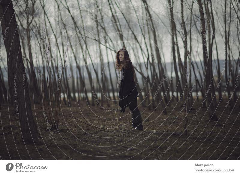 Streifen Junge Frau Jugendliche Erwachsene Körper 1 Mensch 18-30 Jahre Natur Herbst schlechtes Wetter Baum Wald Berge u. Gebirge Pullover Mantel brünett