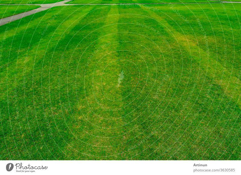 Grünes Grasfeld mit Linienmuster-Textur-Hintergrund und Gehweg abstrakt Gegend Ball schön Sauberkeit Nahaufnahme Farbe Konkurrenz Design leer Umwelt Feld