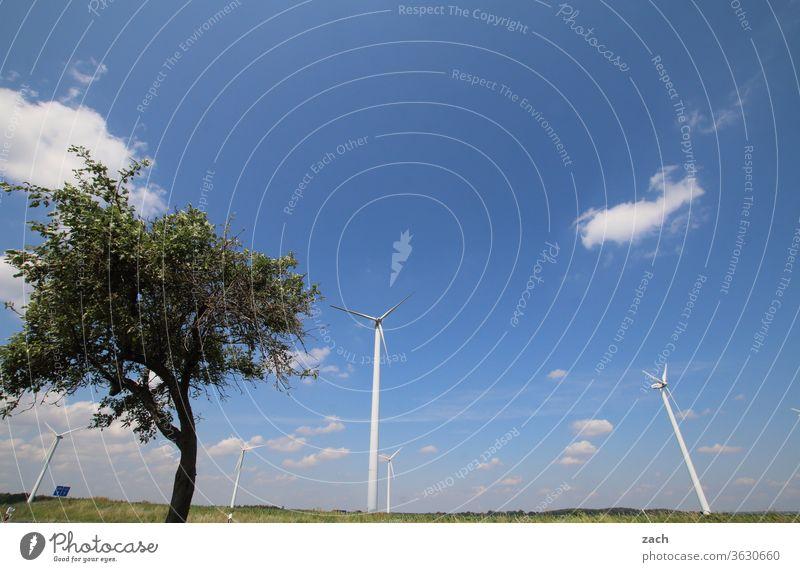 7 Tage durch Brandenburg - Wind und Weite Feld Ackerbau Landwirtschaft Gerste Gerstenfeld Getreide Getreidefeld Weizen Weizenfeld gelb blau Himmel Wolken