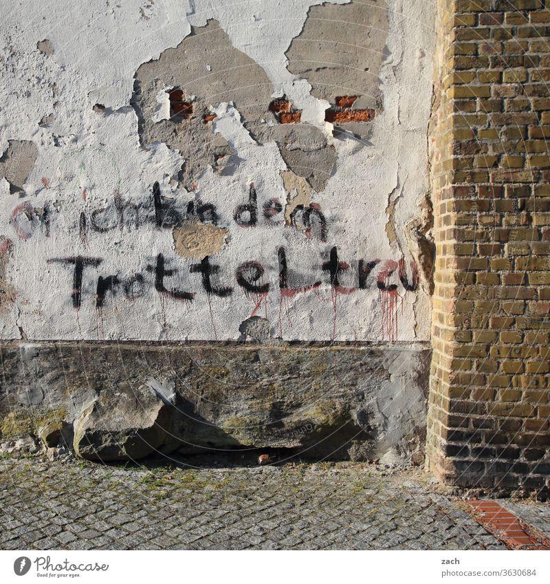 7 Tage durch Brandenburg - treuer Trottel Haus alt kaputt Verfall Ruine Gebäude Zerstörung Mauer Fassade Vergangenheit Vergänglichkeit Wand Fenster Renovieren