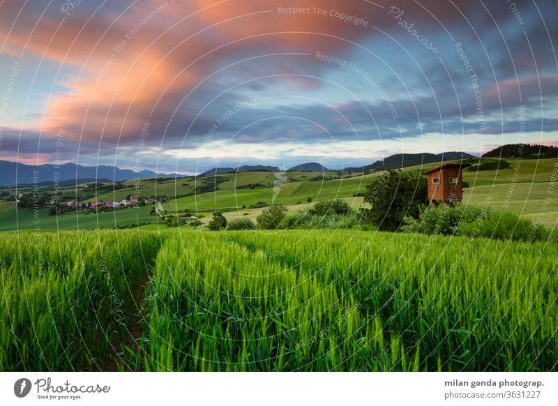 Ländliche Landschaft der Region Turiec in der Nordslowakei. Slowakische Republik ländlich Bereiche Sommer Ackerbau Natur Hügellandschaft Jagdausguck Feld