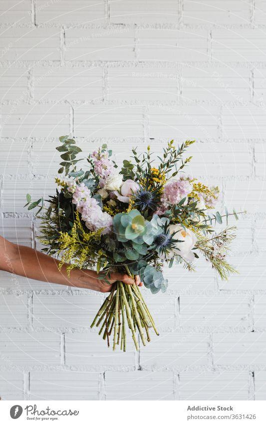 Frau hält einen Strauss frischer Blumen gegen weiße Wand Blumenstrauß Floristik Dekoration & Verzierung natürlich farbenfroh verschiedene Blüte Hand Blütezeit