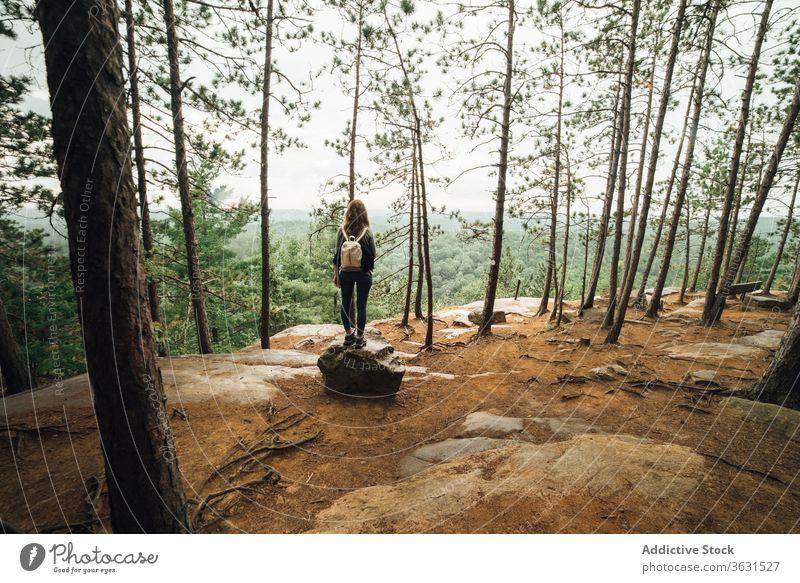 Wanderin wandert am Berghang Frau Berge u. Gebirge Wald Natur reisen Spaziergang Backpacker Wanderung Route Algonquin PP wolkig bedeckt Landschaft Reise