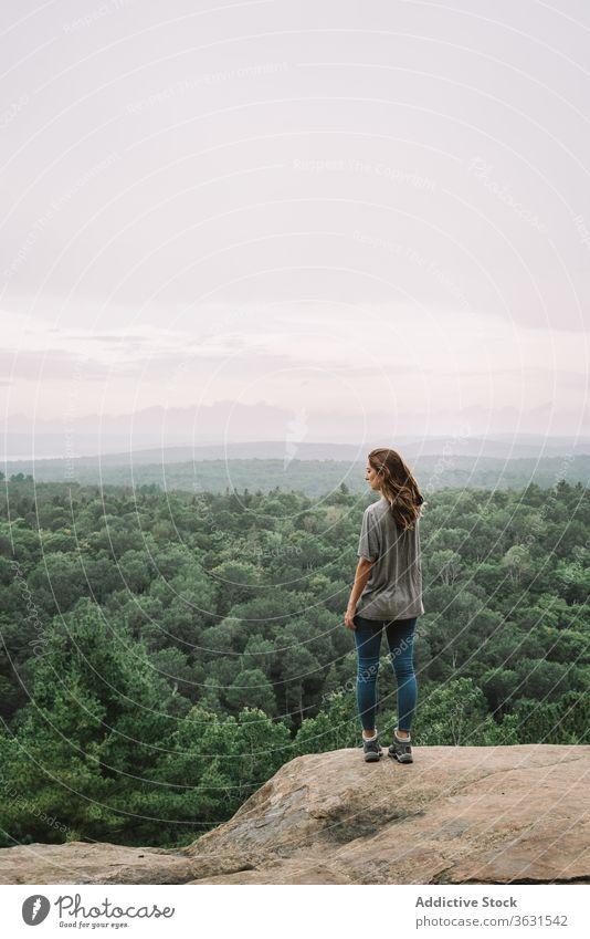 Entspannte Frau genießt Aussicht vom Berg Berge u. Gebirge Wald Natur sich[Akk] entspannen stehen reisen Wanderung Algonquin PP Landschaft See Fluss sonnig