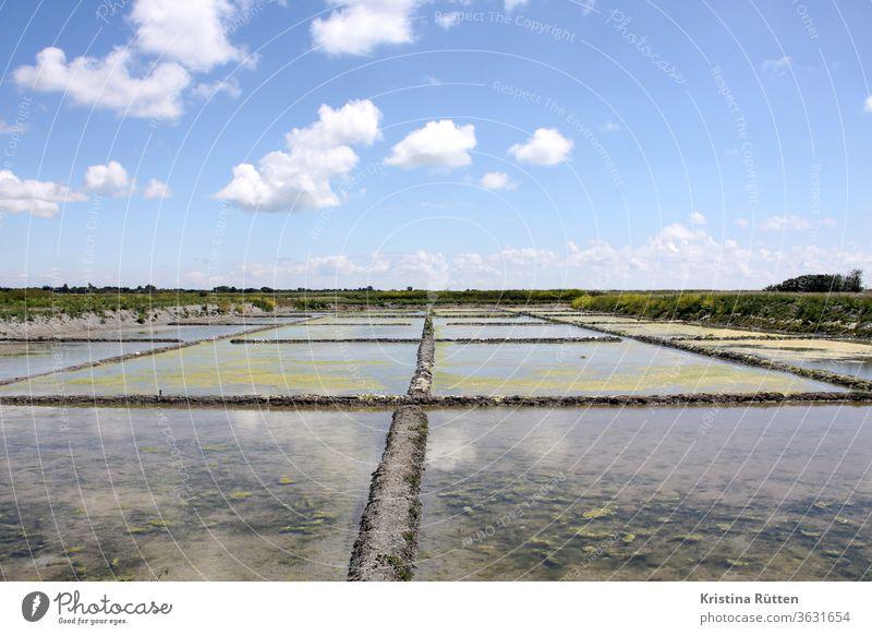 salzgewinnung auf der île de ré saline meerwassersaline salzgarten verdunstungsteiche sole fleur de sel meersalz verdunsten landschaft himmel wolken horizont