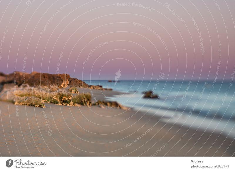 ...Stille Natur Ferien & Urlaub & Reisen Sommer Meer Erholung Landschaft ruhig Strand Küste träumen außergewöhnlich Wellen Zufriedenheit Urelemente genießen