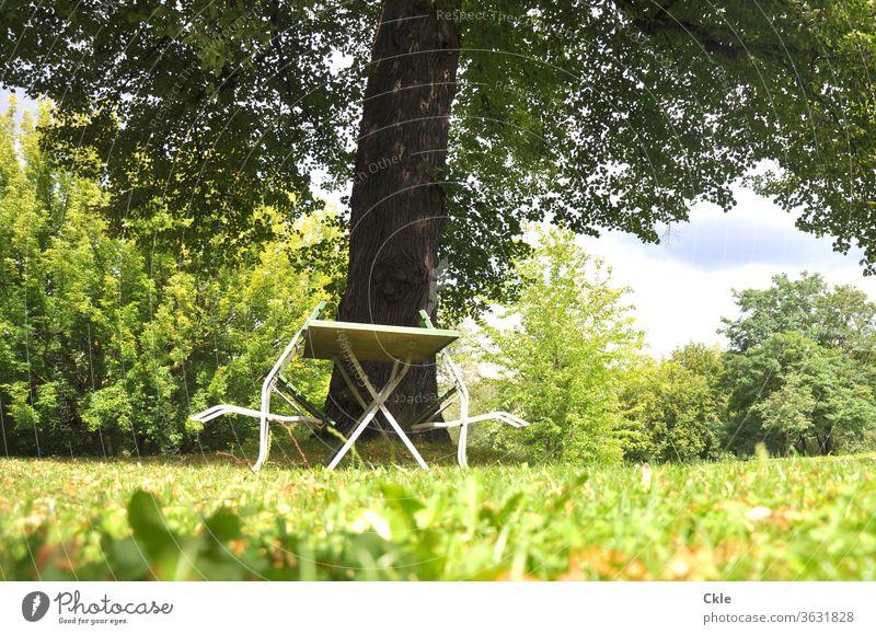 Stühle entspannen am Gartentisch Park Gartenmöbel Stuhl Tisch Baum Rasen Bäume Baumkrone Menschenleer Außenaufnahme Farbfoto Tag Gartenstuhl Wiese grün ruhig