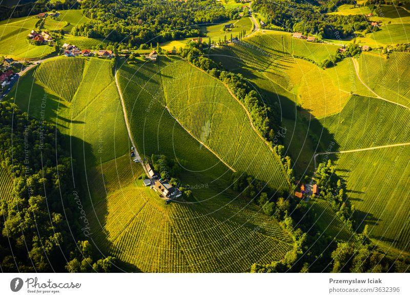 Luftaufnahme von grünen Hügeln und Weinbergen mit Bergen im Hintergrund. Österreichs Weinberglandschaft. Sommer Weinbau Natur Landschaft Transparente Sonne