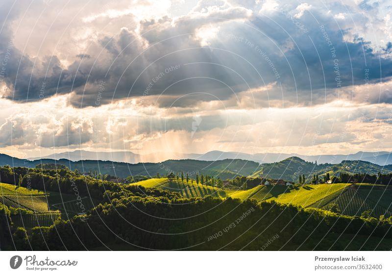 Wunderschöne Landschaft mit österreichischen Weinbergen in der Südsteiermark. Berühmter Ort in der Toskana, den man gerne besucht. Sommer idyllisch reisen