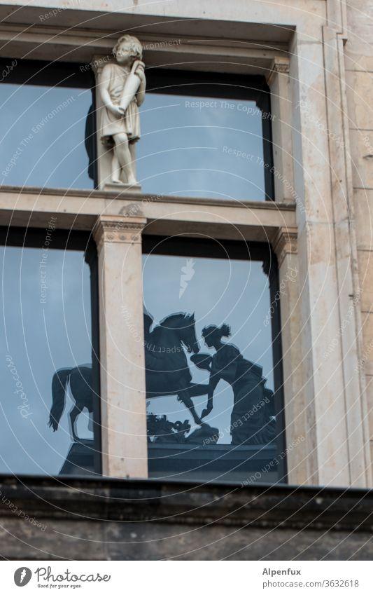 Fütterungszeit Spiegelung Pferd füttern Reflexion & Spiegelung Fenster Tier Tierporträt historisches gebäude Historisches Museum Außenaufnahme Architektur alt