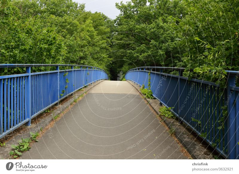 Brücke Fußgängerbrücke Fußweg straße fußgänger spazieren laufen gehen umwelt natur grün pflanzen gebüsch geländer pflanzen metall gerüst