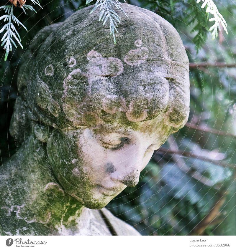 Die Dame lächelt, seit Jahrzehnten aus Stein... Friedhof Statue Lächeln lächelnd Lichter sanft vergänglich grün Sommer Sonne zauberhaft Außenaufnahme Farbfoto