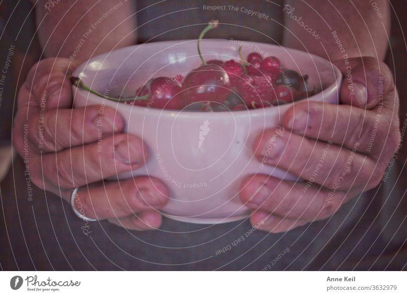 Sie hält die rosa Tasse in den Händen, sie war gefüllt mit roten Beeren, Kirschen, Johannisbeeren und Himbeeren. Ernährung Farbfoto Vegetarische Ernährung