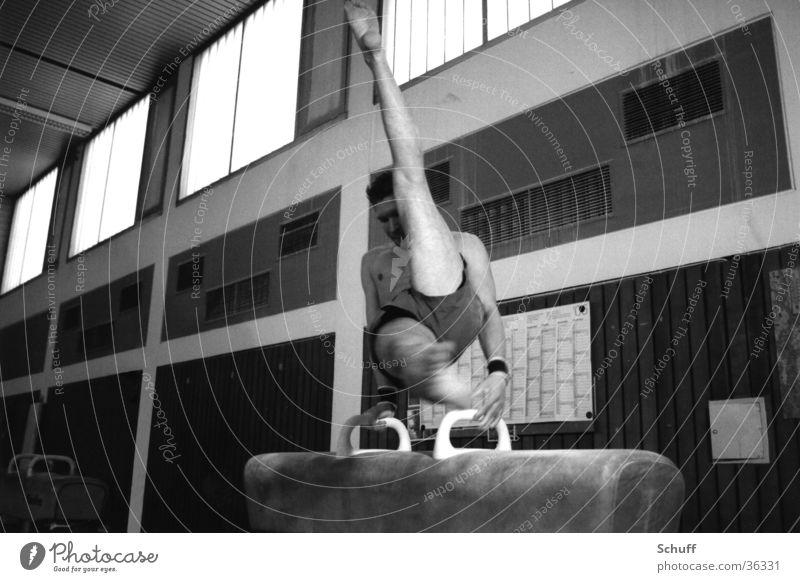 Turnen Seitpferd Körper Sport Fitness Sport-Training Sportler Sporthalle maskulin Junger Mann Jugendliche 1 Mensch 18-30 Jahre Erwachsene Bewegung Turner