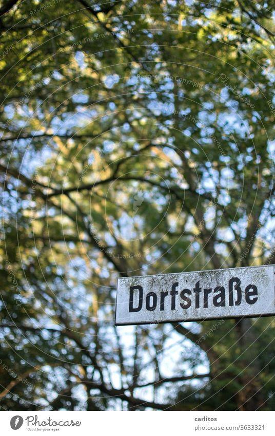 Downtown Kleinkleckersdorf Dorf Dorfstraße Provinz Schild Straße Baum Schrift Grün Schwarz Weiss Schatten Landleben Landflucht Ruhe Erholung