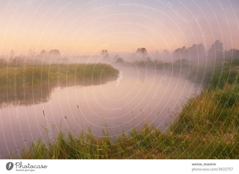 Morgennebel am Fluss. Wunderschöne Sommer-Sonnenaufgangs-Landschaft Nebel Natur Baum Hintergrund Wasser im Freien Reflexion & Spiegelung Morgendämmerung neblig