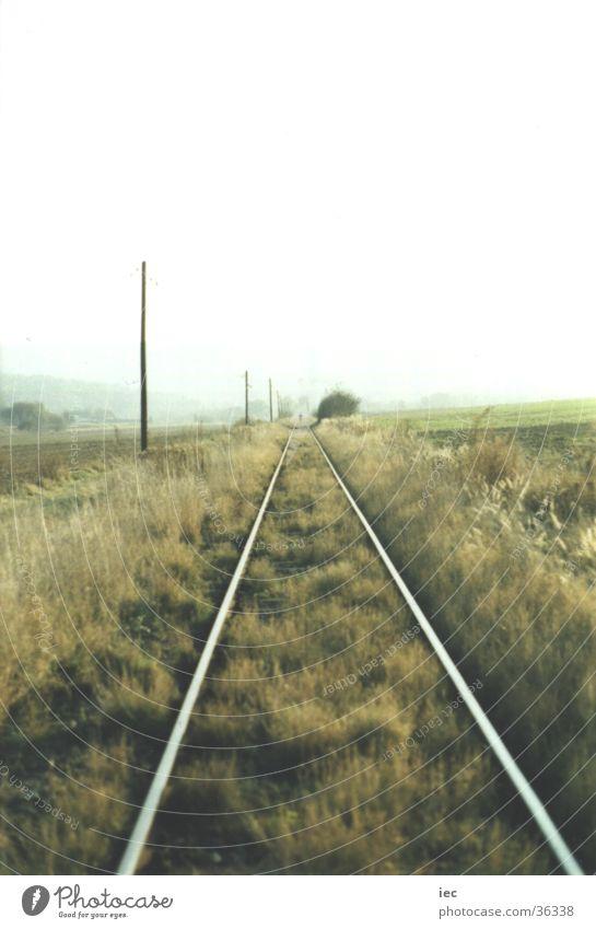 Gleise ins Nichts Gras Eisenbahn Ebene