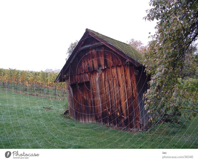 Hütte in den Weinbergen Einsamkeit Freizeit & Hobby Österreich Holzhütte Bundesland Burgenland