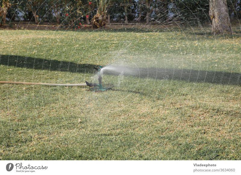 automatisches Rasenbewässerungssystem im Park. Beregnung des Rasens und der Pflanzen Gras Bewässerung System Berieselung Ackerbau Gerät Garten grün heimwärts