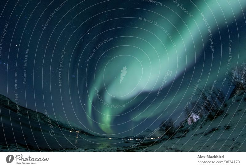 Nordlicht in Tromso, Norwegen tromso Norweger Fjord Fjorde Europa Eis Winter Norden Alaska arktische Kreuzfahrt Boot atemberaubend kalt Ausflugsziel entdecken