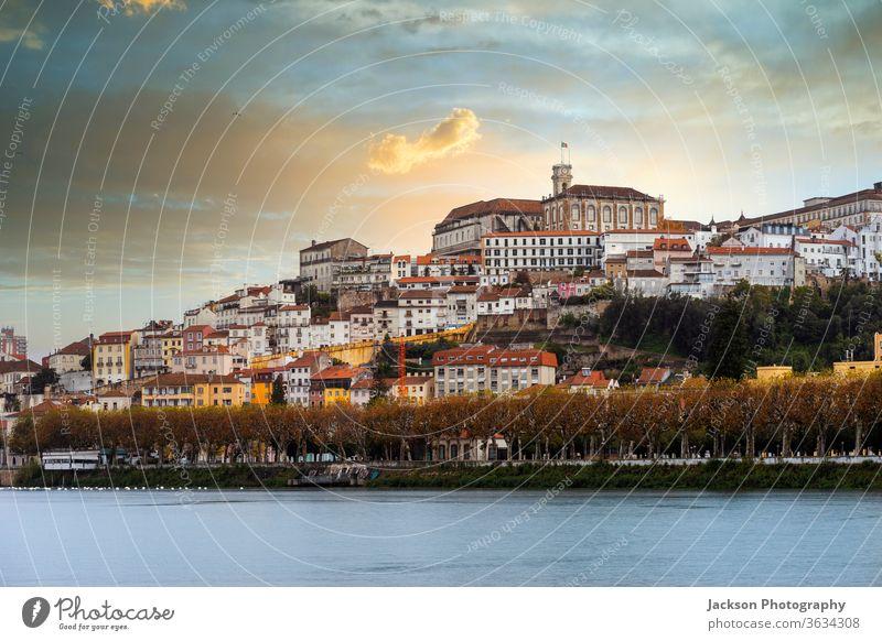 Das Stadtbild von Coimbra bei Sonnenuntergang, Portugal coimbra Fluss Architektur Stadtzentrum Straße Haus grün Garten Baum Natur UNESCO-Weltkulturerbe Sommer