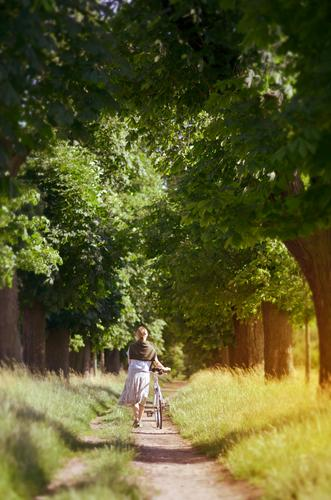 Der weg ist das Ziel Frau Fahrrad schieben Alleebäume Sommer Mobilität grün Wiese Fahrradfahren Farbfoto Tag Baum Straße Schatten Wege & Pfade Menschenleer
