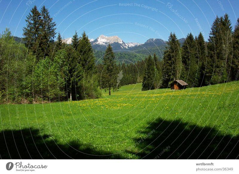 Berglandschaft Ferien & Urlaub & Reisen Ausflug Ferne Freiheit Sommer Berge u. Gebirge Natur Landschaft Frühling Baum Wiese Wald Alpen Gipfel Hütte blau grün