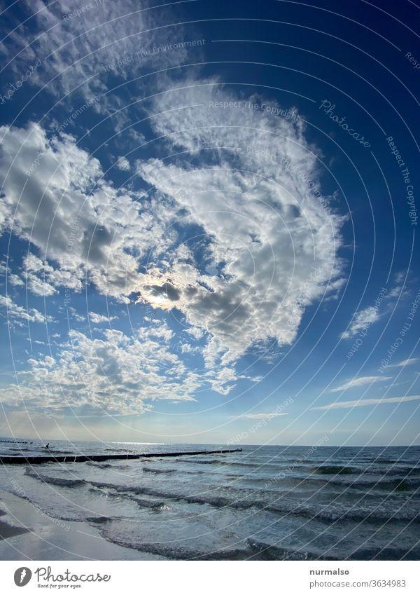 Tag am Meer Ostsee Stand Buhnen Wellen Salzwasser Sommer Urlaub baden ddr Insel darß fkk wolken stimmung erholung weite horizont