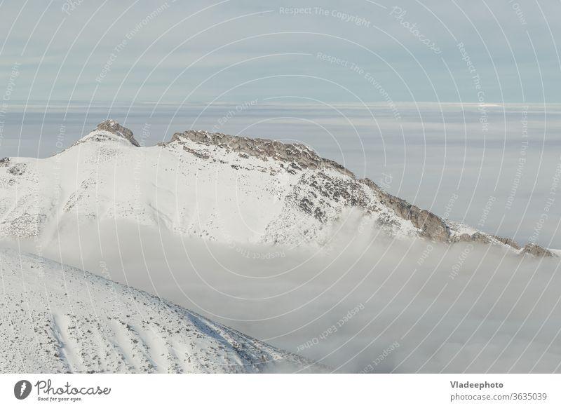 Winter in der Hohen Tatra. Hohe Tatra. Berge u. Gebirge Ambitus blau Landschaft Nebel Hügel Gipfel Panorama Natur schön Europa Kamm Alp Schönheit kalt Umwelt