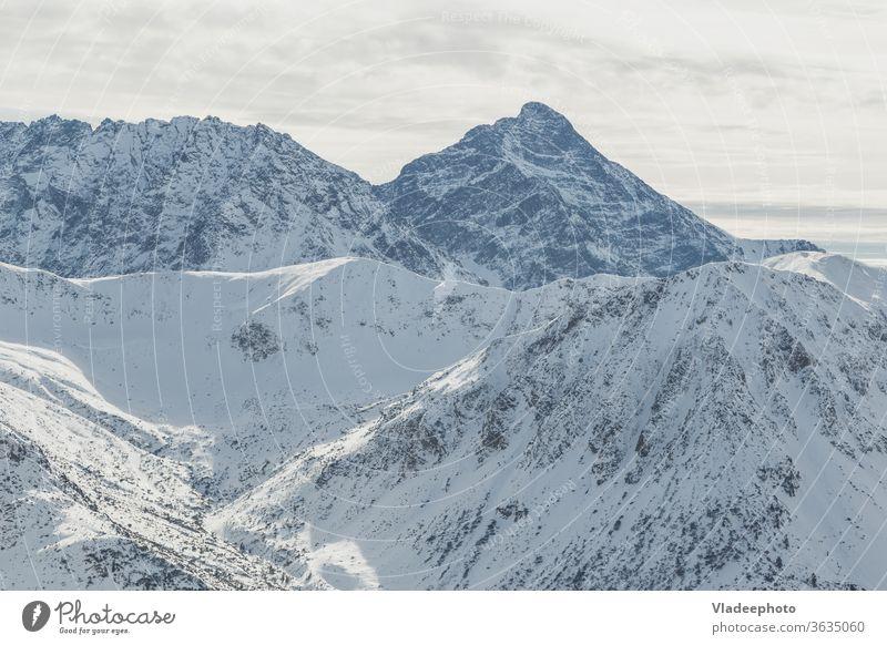 Der schneebedeckte Gipfel Swinica des Tatra-Gebirges an der Grenze zwischen Polen und der Slowakei. Berge u. Gebirge Winter swinica Landschaft Schnee Natur