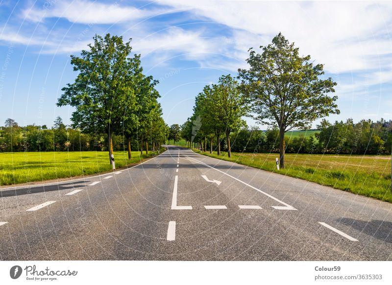 Landstraße mit Bäumen im Sommer Straße grün Natur Landschaft ländlich Himmel Weg reisen Ausflug Gras Asphalt leer Szene Ansicht Autobahn Feld Reise Baum