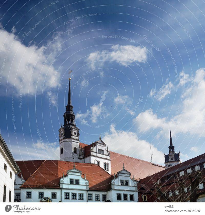 Torgau wo es am höchsten ist Sachsen Deutschland Kleinstadt Stadtzentrum Gebäude Mauer Wand Fenster Dach Farbfoto Außenaufnahme Detailaufnahme Menschenleer Tag