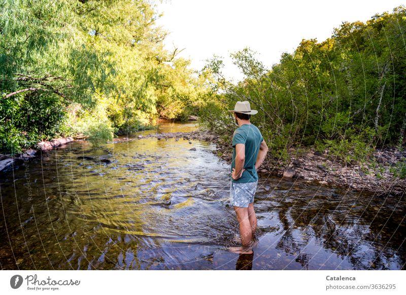 Junger Mann mit Strohhut und Badehose steht an einer seichten Stelle im Bach. Üppige Vegetation wächst an den Uferrändern Natur Pflanze Flora Büsche Gestrüpp