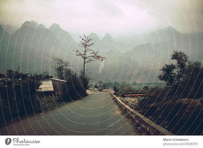 Düstere und launische Filmkulisse der nebelverhangenen Bergstraße in Meo vac, Provinz Ha giang in Nordvietnam Filmlandschaft neblige Bergstraße