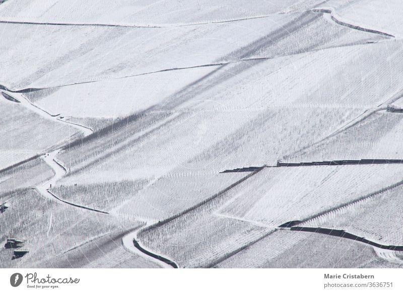 Riesige schneebedeckte Weinberge im Moseltal von Bernkastel-kues in Deutschland während der Wintersaison Deutsche Weinberge mosel deutschland