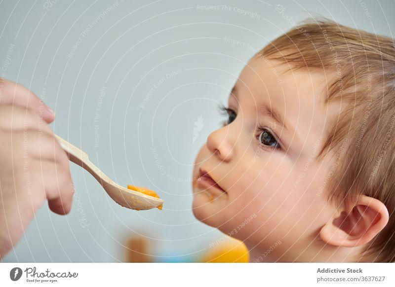 Mutter füttert kleines Kind mit Püree Baby essen Futter Lebensmittel Kleinkind frisch Gesundheit natürlich Mahlzeit niedlich Kindheit wenig hungrig Ernährung
