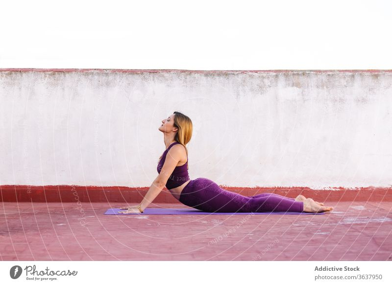 Konzentrierte Frau macht Yoga in Kobra-Pose beweglich üben Unterlage Vajrasana Wellness Asana Konzentration Terrasse Leggings BH Körper Harmonie schlank
