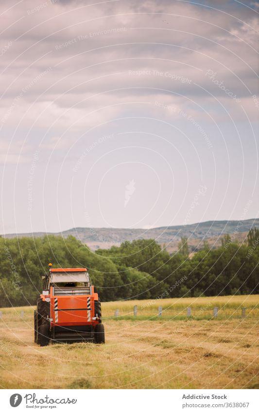 Traktor fahren und Heu auf dem Feld ernten Gras Mann Ernte sonnig industriell Maschine Laufwerk männlich Ackerbau ländlich Natur trocknen Arbeit tagsüber Sommer
