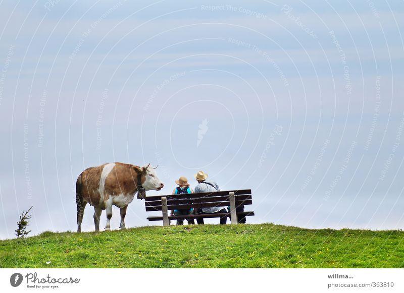 Pech für die Kuh Elsa - BESETZT! Alm Paar Partner Frau Mann Mensch Bank Wiese Ausflug Sommerurlaub beobachten Kommunizieren sprechen lustig sitzen Neugier