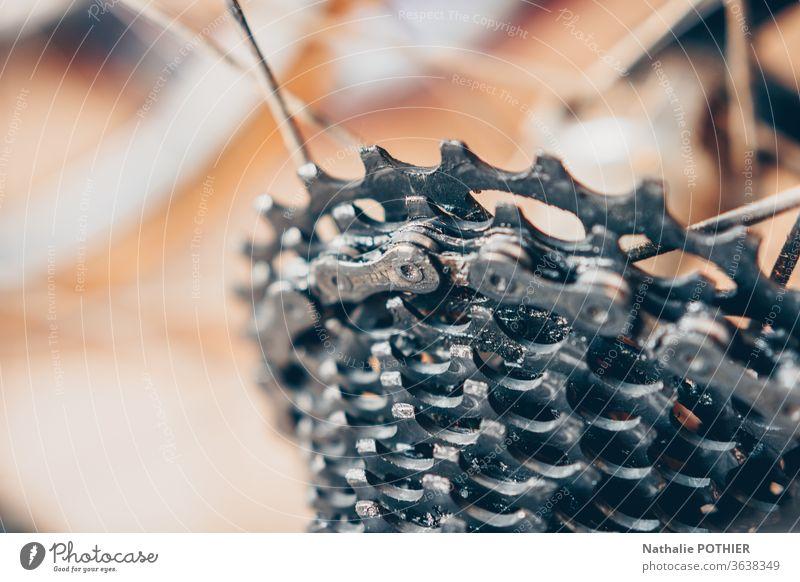 Fahrrad-Kettenschaltung bic gekerbt Kerbe Plateau Rennen Fahrradfahren Radfahrer Fahrradtour Sport Freizeit & Hobby Farbfoto Nahaufnahme Metall anketten