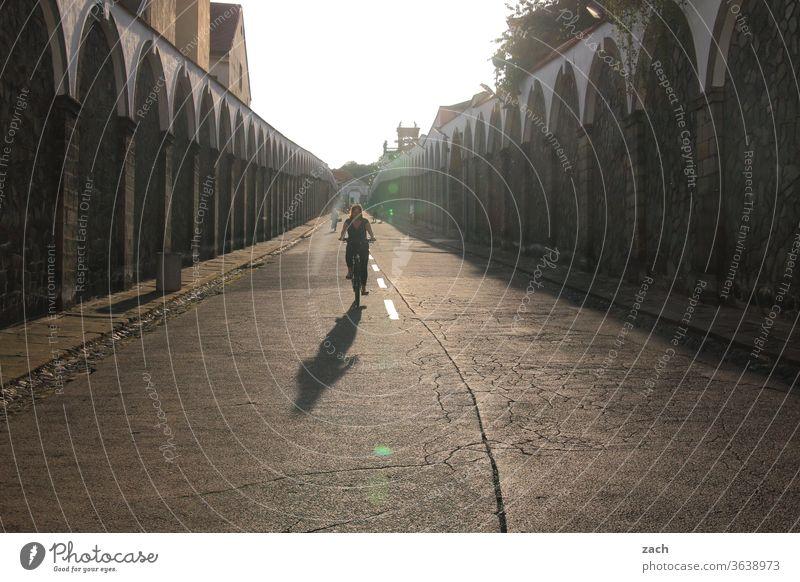 Zielgerade Rad Fahrrad Radfahren Fahrradfahren Fahrradtour Fahrradweg Radtour Wege & Pfade Straße Straßenverkehr Bewegung Freizeit & Hobby Ausflug Mobilität