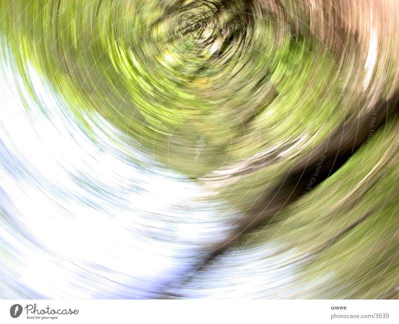 rotationsgerät grün Baum Bewegung Drehung