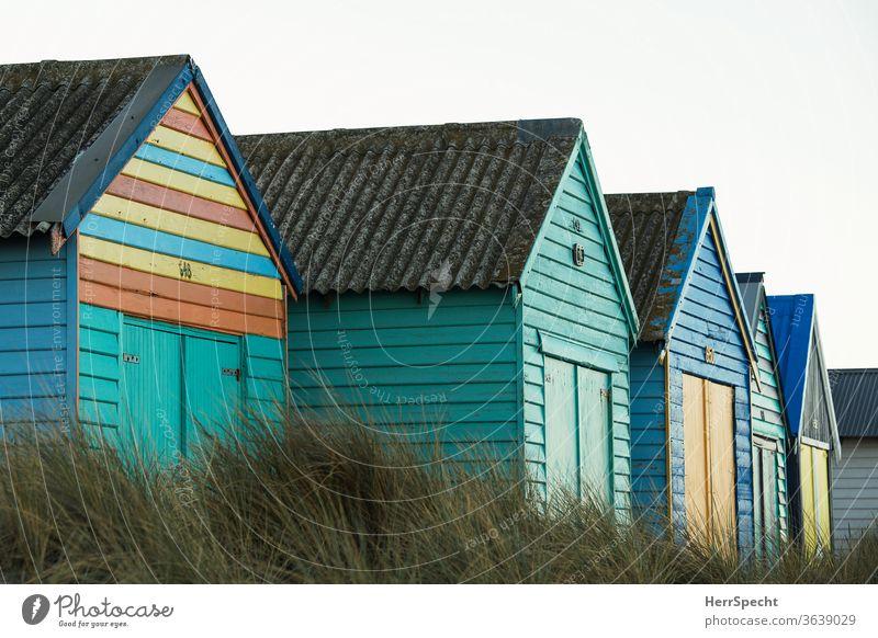 Bunte Strandhäuser aus Holz Strandhaus Ferien & Urlaub & Reisen Sommerurlaub Menschenleer Tourismus Hütte Außenaufnahme Ferne Meer blau Küste Strandhafer