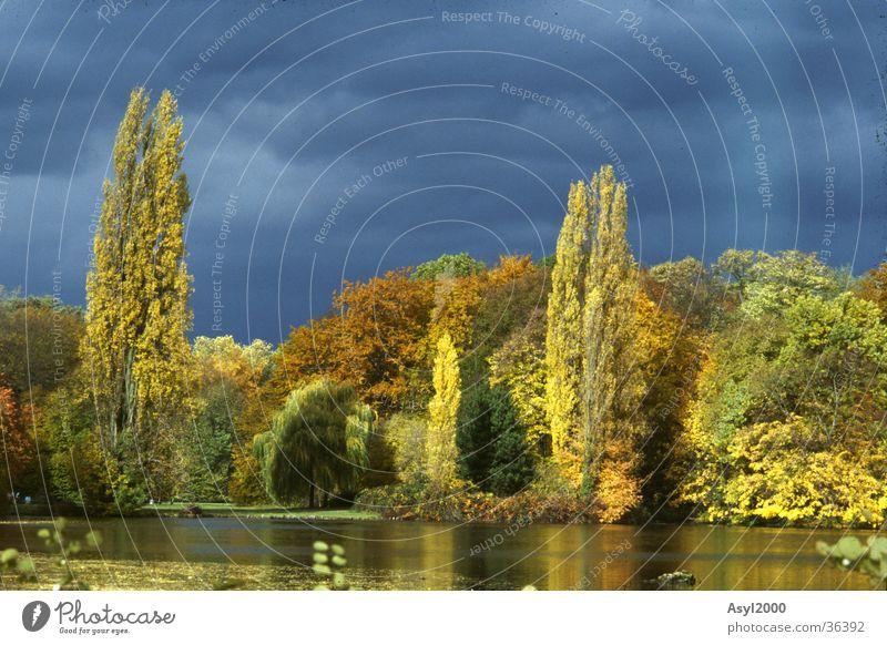 vergessenes LAnd(i) Wolken gelb Farbe dunkel Herbst See
