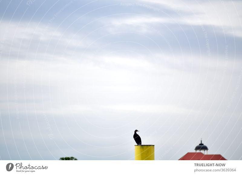 Ein schwarzer Kormoran sitzt auf einem gelb markierten Dalben vor grau bedecktem Himmel und schaut in die Gegend, von der nur das rote Dach eines großen Gebäudes mit einem geschwungenen Zierturm und die Spitze einer Baumkrone ins Bild ragen